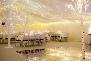 Complete Deluxe Winter Marquee Wedding Package